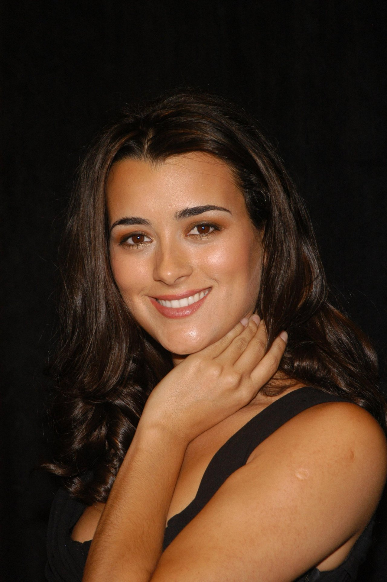 Cote De Pablo wallpapers (861)
